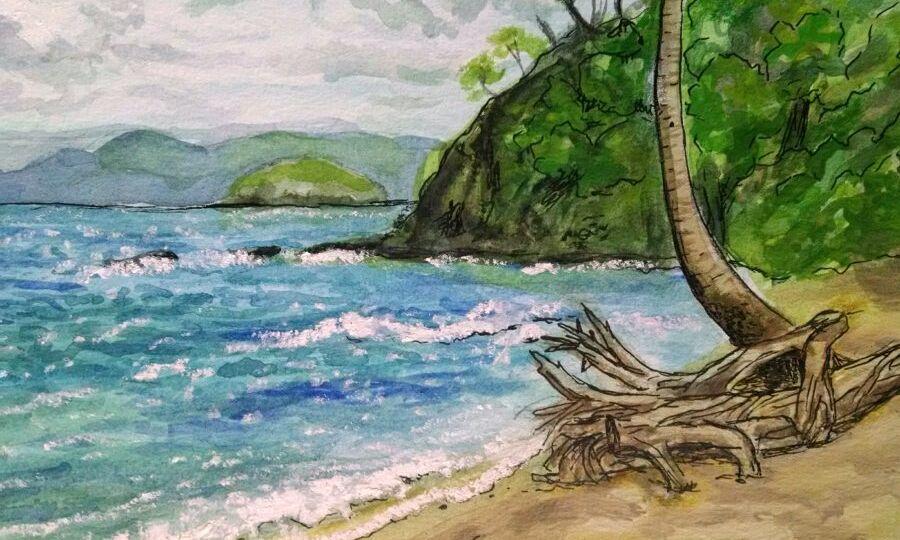 Beach at Guanacaste Costa Rica