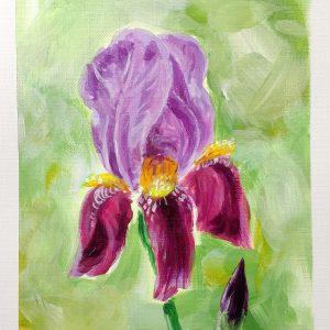 ryanne-levin-iris