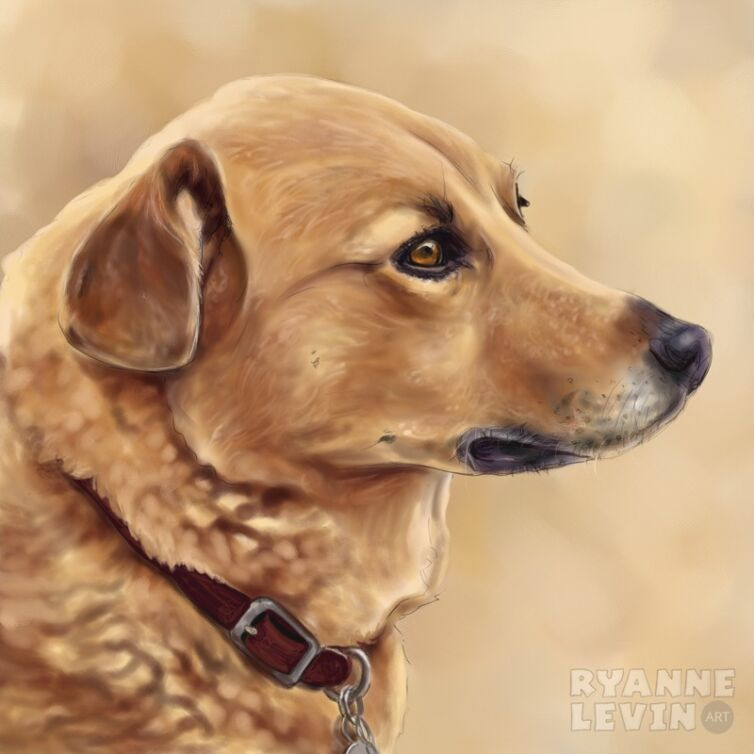 Digital Oils Pet Portrait