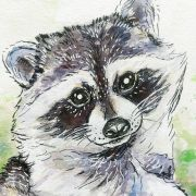 relaxing-raccoon-watercolor-closeup-ryanne-levin-art2