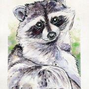 relaxing-raccoon-watercolor-ryanne-levin-art2