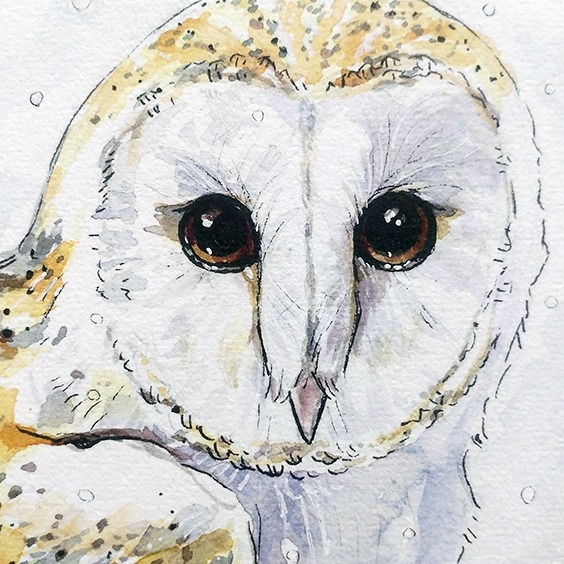 snow-owl-watercolor-closeup_ryannelevin-art2