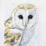 snow-owl-watercolor-ryanne-levin-art2