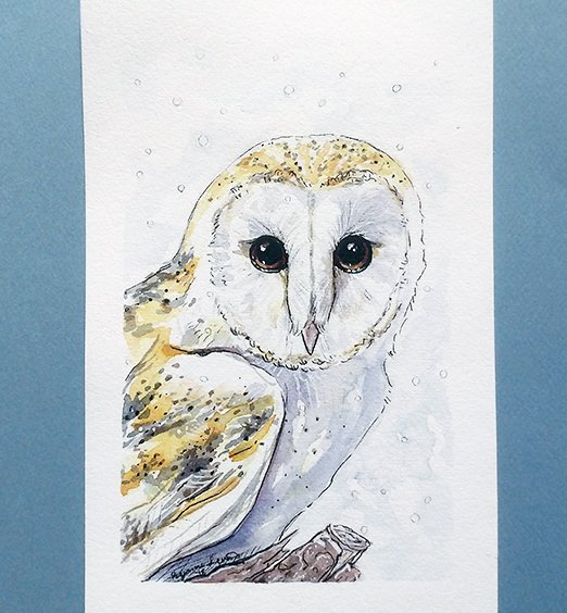 snow-owl-watercolor-ryanne-levin-art2