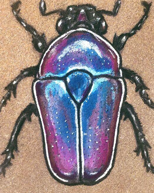 flower-beetle-on-sandstone-detail-ryanne-levin-art