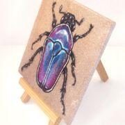 flower-beetle-on-sandstone-side-ryanne-levin-art
