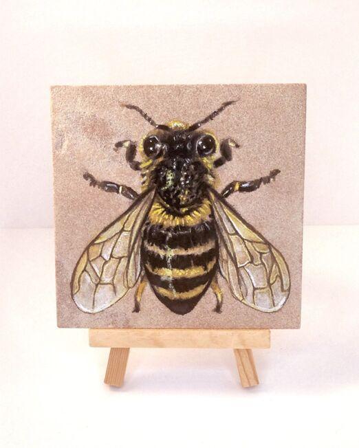 honey-bee-on-sandstone-ryanne-levin-art