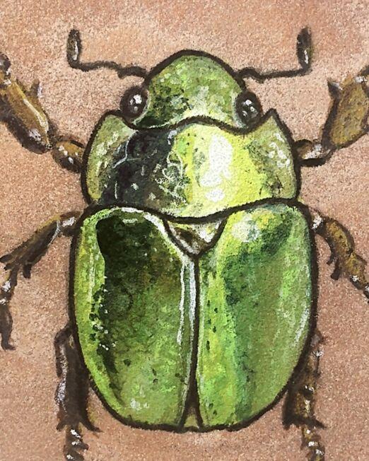 jewel-scarab-on-sandstone-detail-ryanne-levin-art