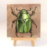 flower-beetle2-on-sandstone-side-ryanne-levin-art